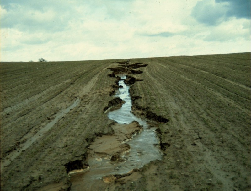 Soil erosion agriculture