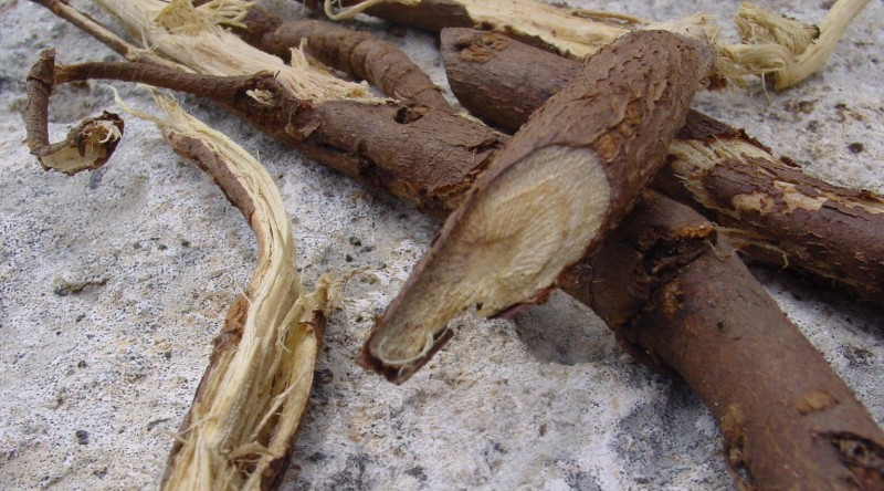 Licorice root liquorice